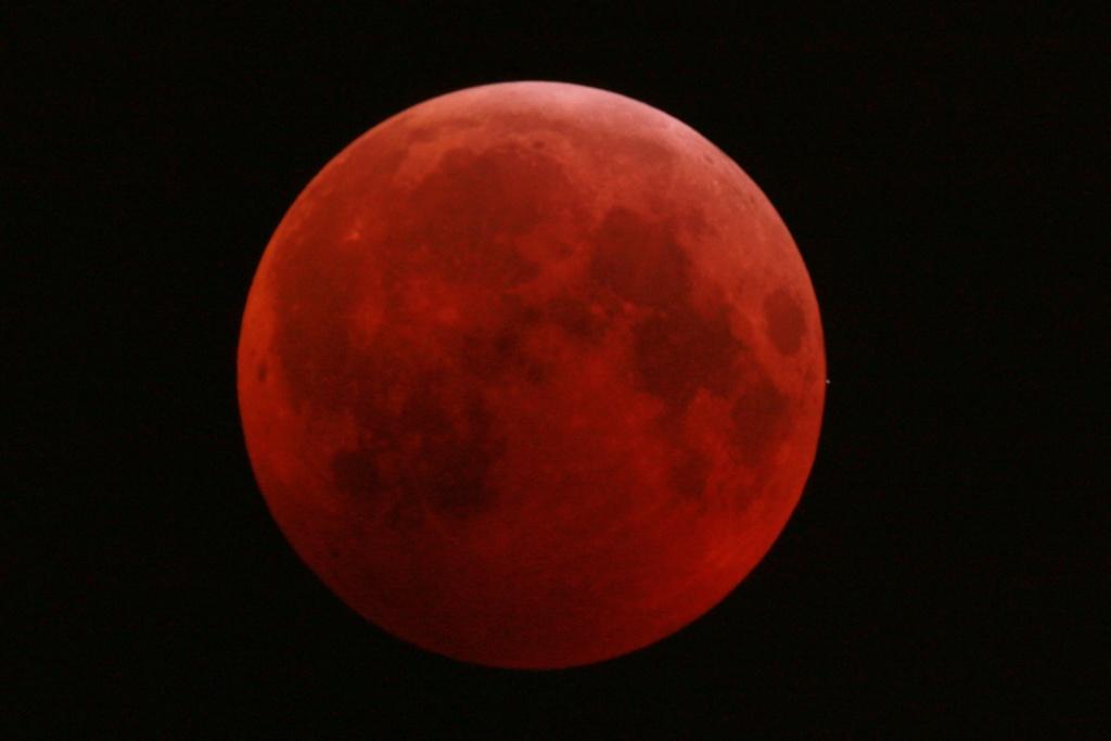 Eclipse de Lune du 21 février 2019 Dsc_0210