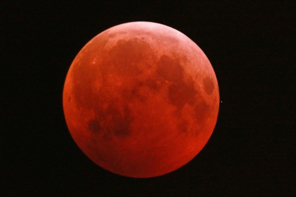 Eclipse de Lune du 21 février 2019 Dsc_0211