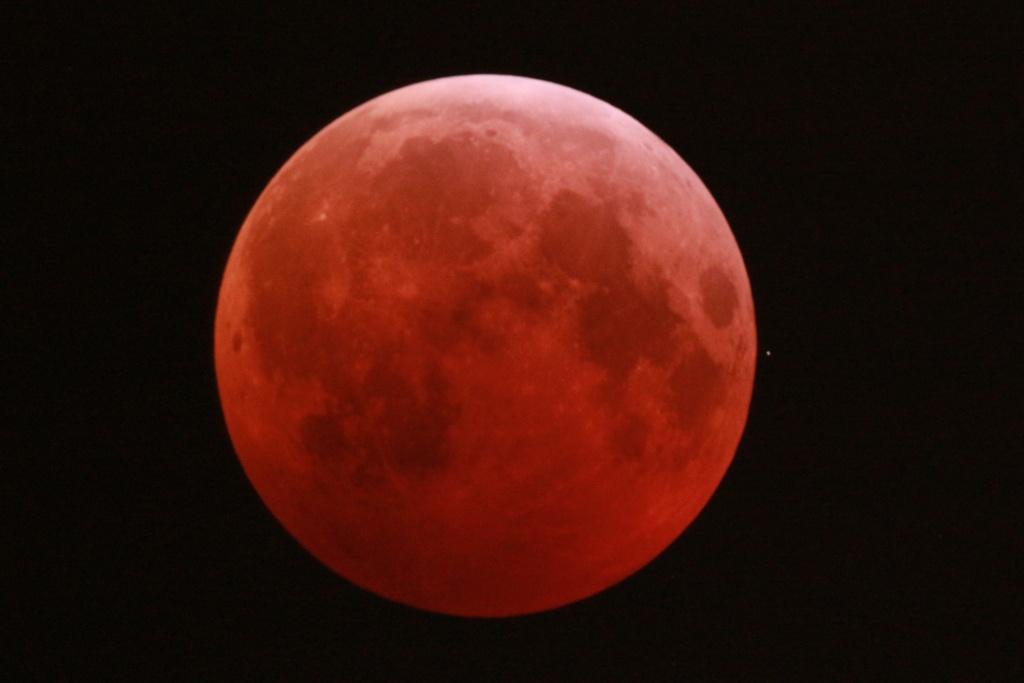 Eclipse de Lune du 21 février 2019 Dsc_0212