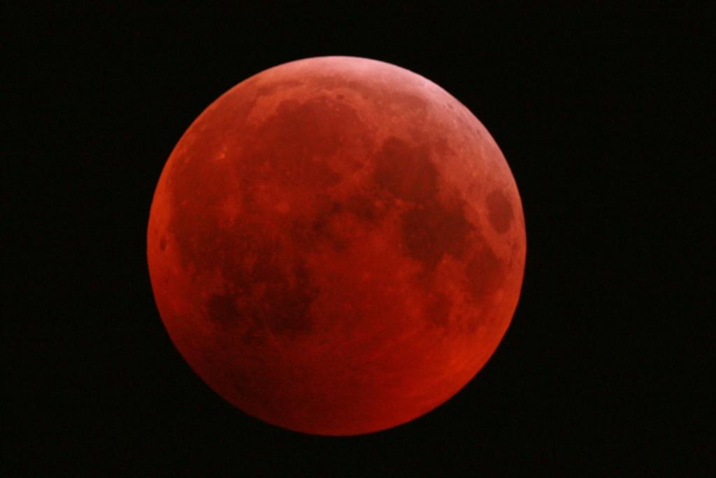 Eclipse de Lune du 21 février 2019 Dsc_0213