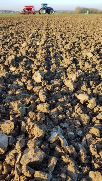 Semis céréales 2019 20200114
