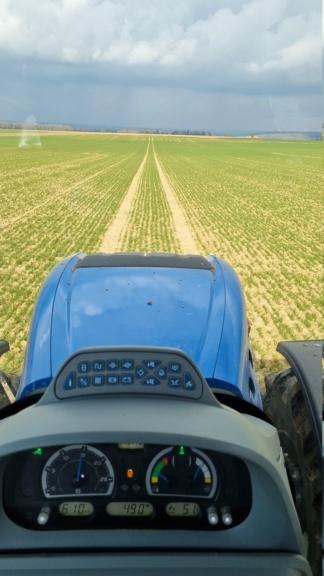 suivi blé 2021 - Page 3 20210316