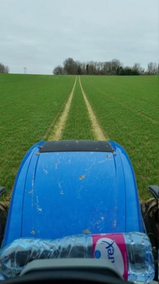 suivi blé 2021 - Page 3 20210321
