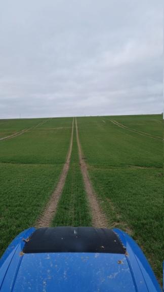 suivi blé 2021 - Page 3 20210322