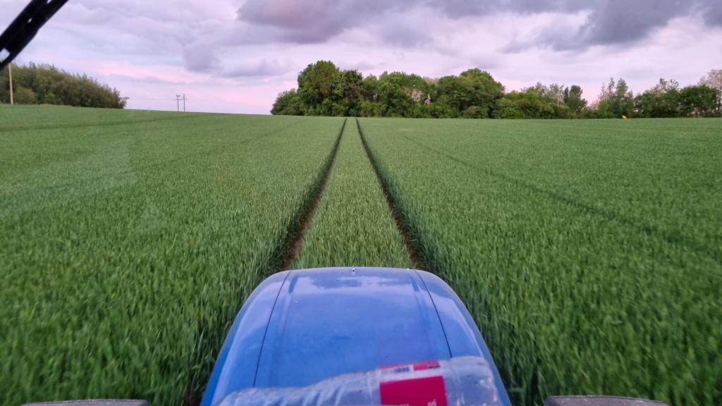 suivi blé 2021 - Page 17 20210532