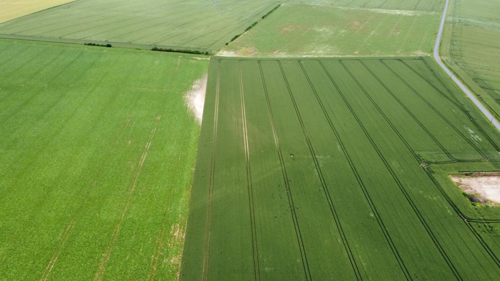 suivi blé 2021 - Page 5 Photo_19
