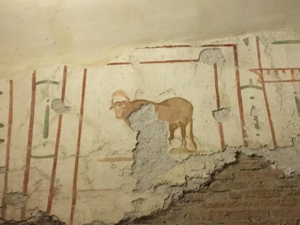 Las casas romanas del Celio, Roma Apis_810