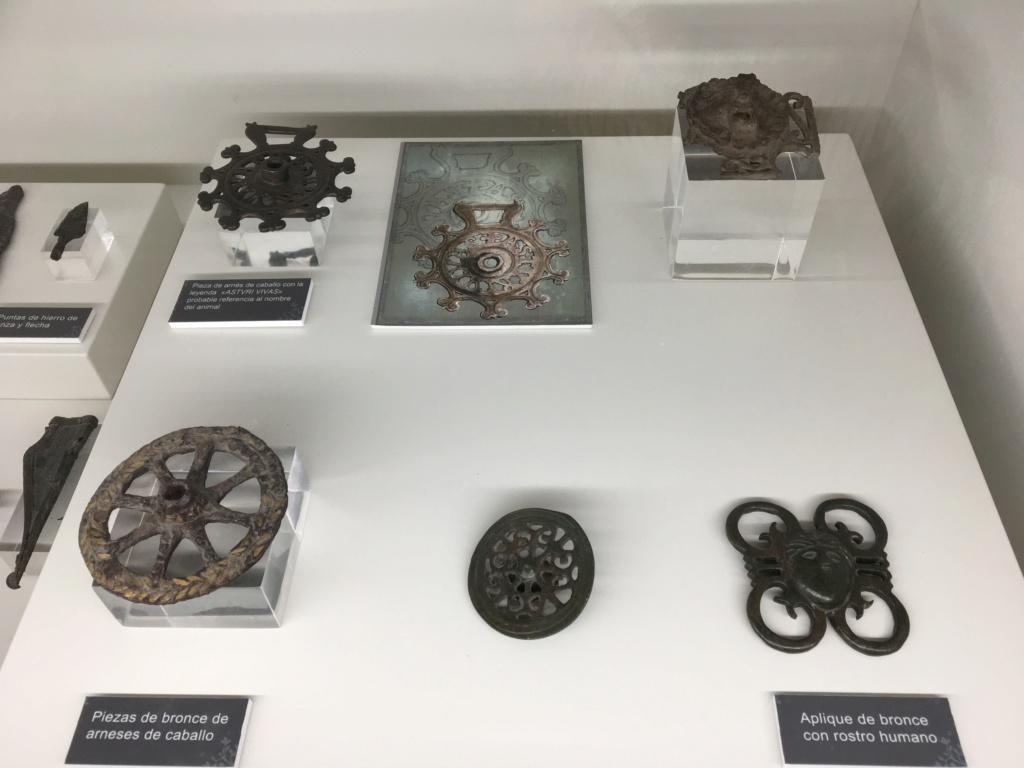 Museo de la Villa Romana de la Olmeda, Saldaña (Palencia) Apliqu10