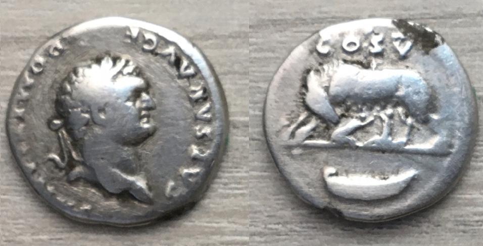 Denario fundido de Domiciano, COS V, loba y gemelos Domici13