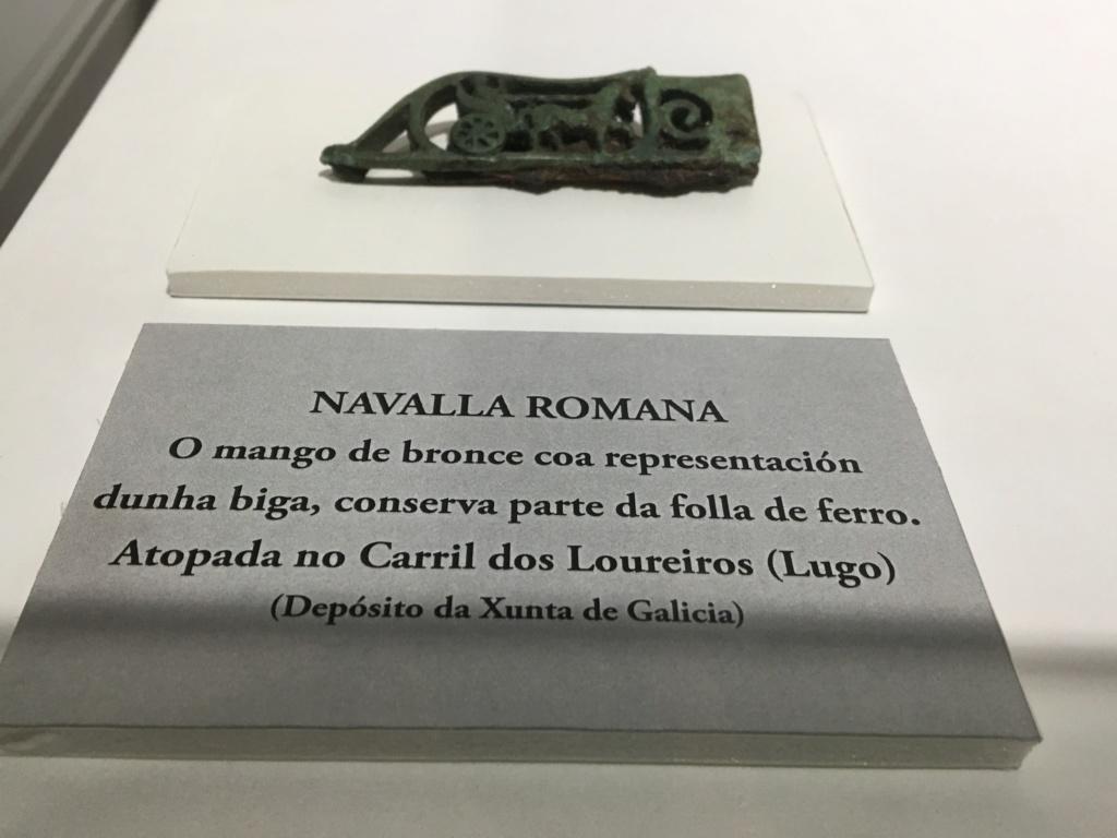 Castro y museo Celta-Romano de Viladonga, Lugo Img_7325