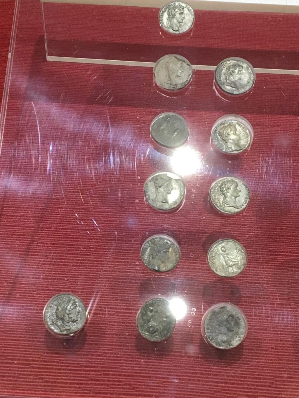 Castro y museo Celta-Romano de Viladonga, Lugo Img_7423
