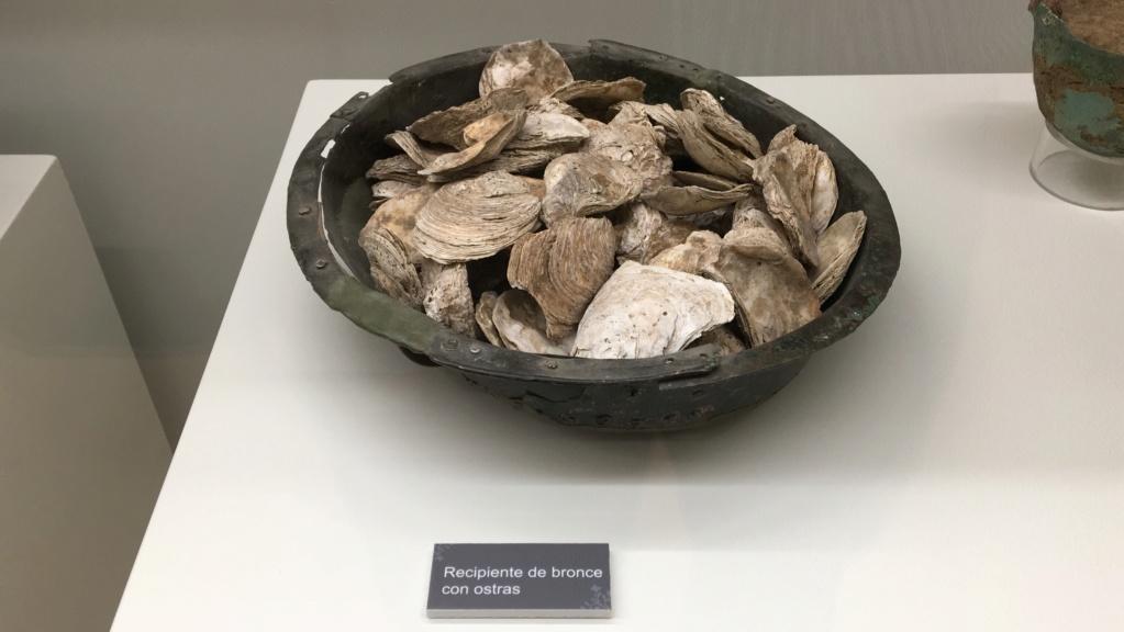 Museo de la Villa Romana de la Olmeda, Saldaña (Palencia) Ostras16