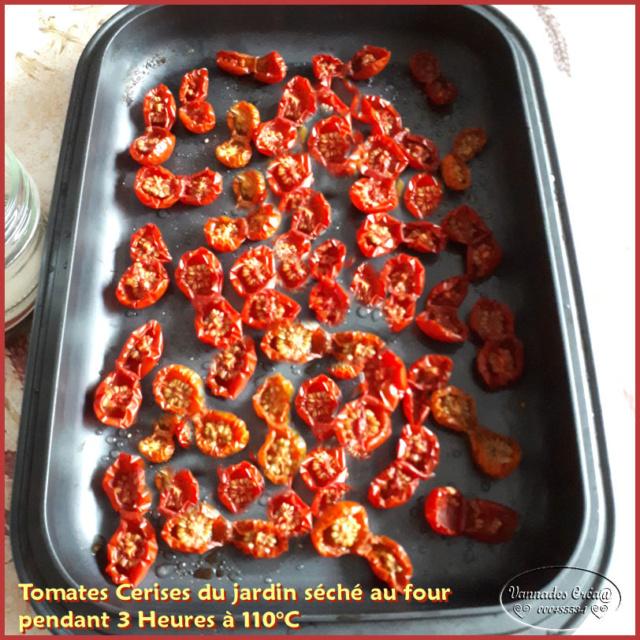Les tomates que je cultive dans mon petit Jardin *** 20180810