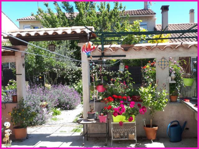 Mes fleurs de mon petit Jardin  20190516