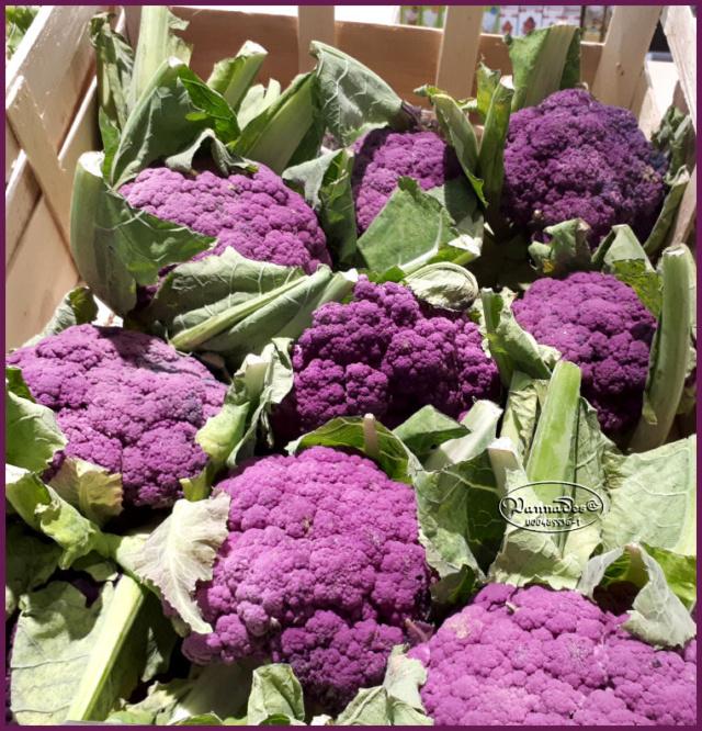 Fruits et Légumes de mon Jardin  20190717