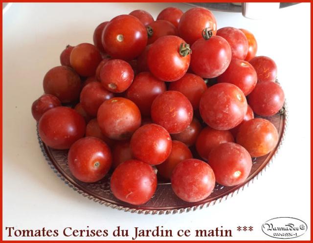 Fruits et Légumes de mon Jardin  20190735