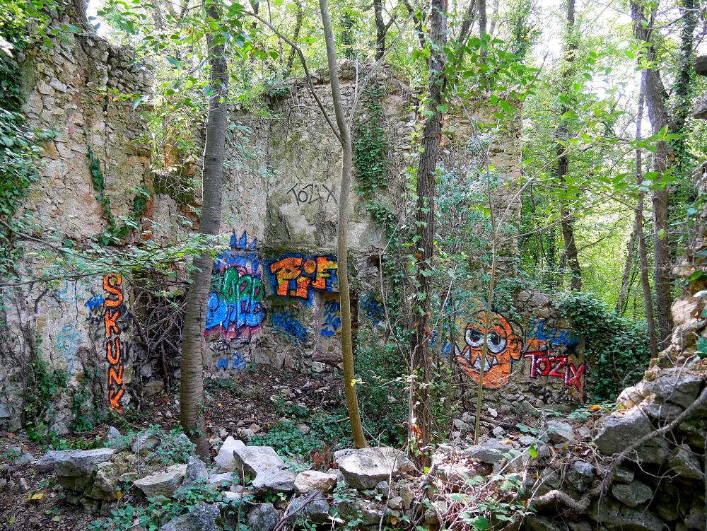 Dans la Forêt  cet Automne  4_bis_11