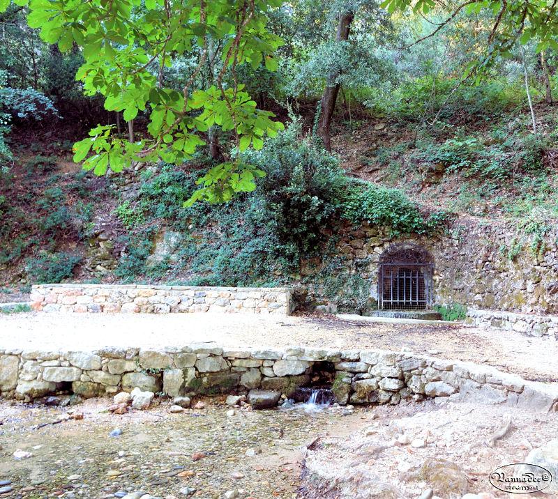 source des Nayes du Village (Var)  Dsc00819