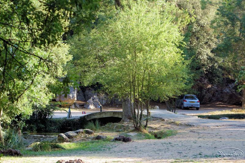 source des Nayes du Village (Var)  Dsc00913