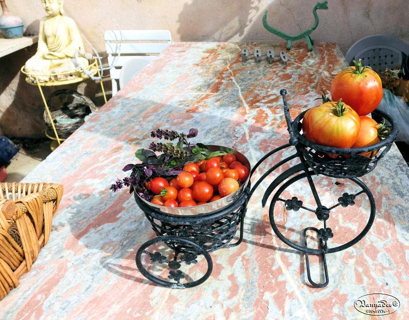 Légumes et fruits  du Jardin - Page 2 Dsc01019
