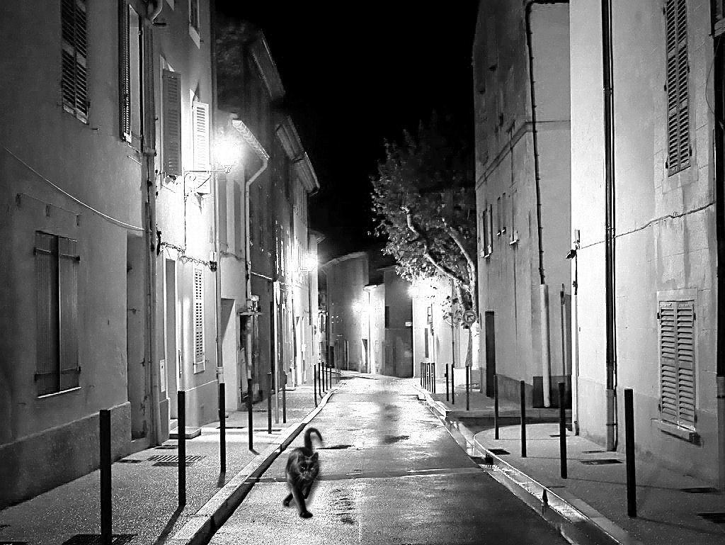 Sous la Pluie Noir_e15