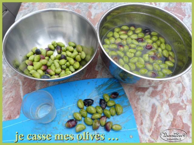 Faire ses Olives  Olives11