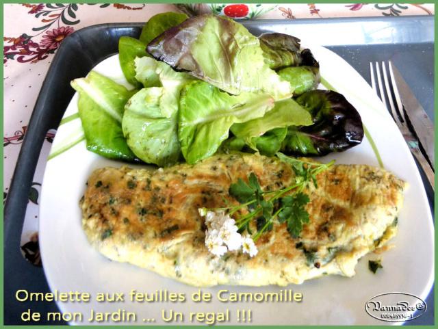 Omelette de feuilles de Camomille Omelet10