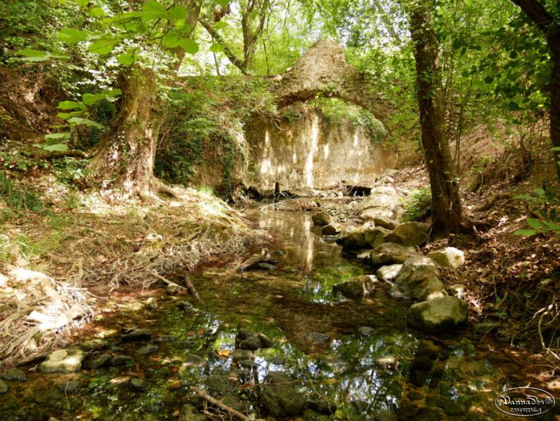 Mon village et sa source  P1000511