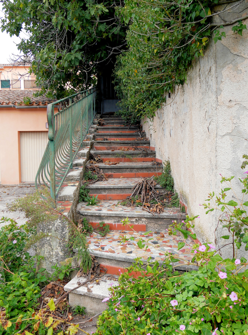 La Maison abandonnée  P1050711