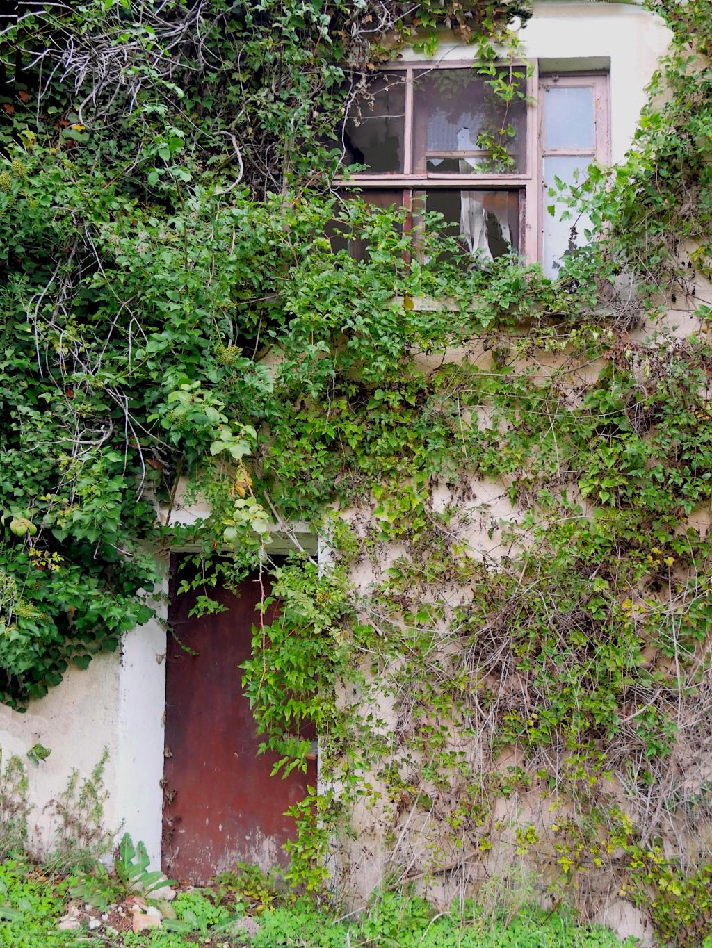 La Maison abandonnée  P1050713