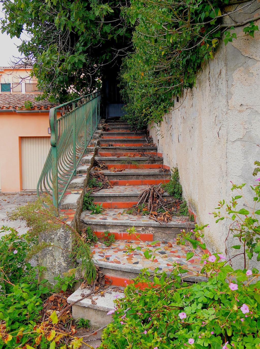 La Maison abandonnée  P1050714
