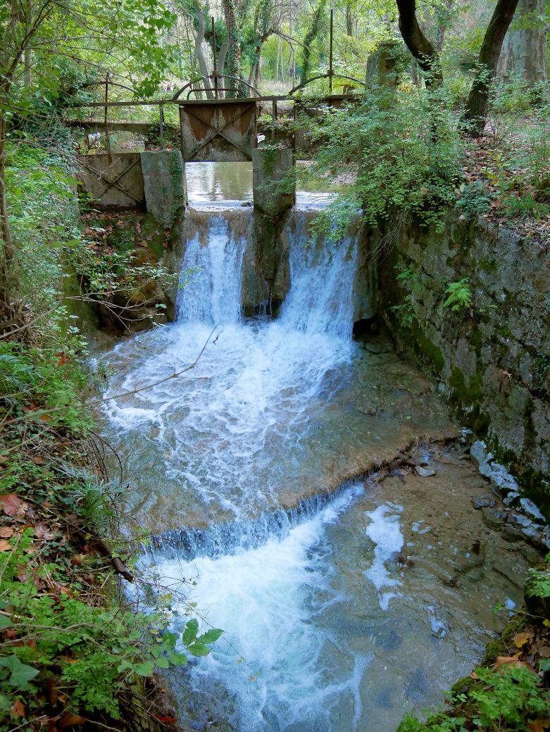 de l'eau à la source  P1060717