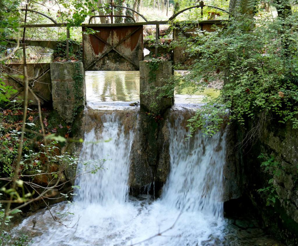 de l'eau à la source  P1060720