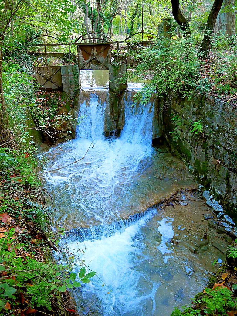 de l'eau à la source  P1060724