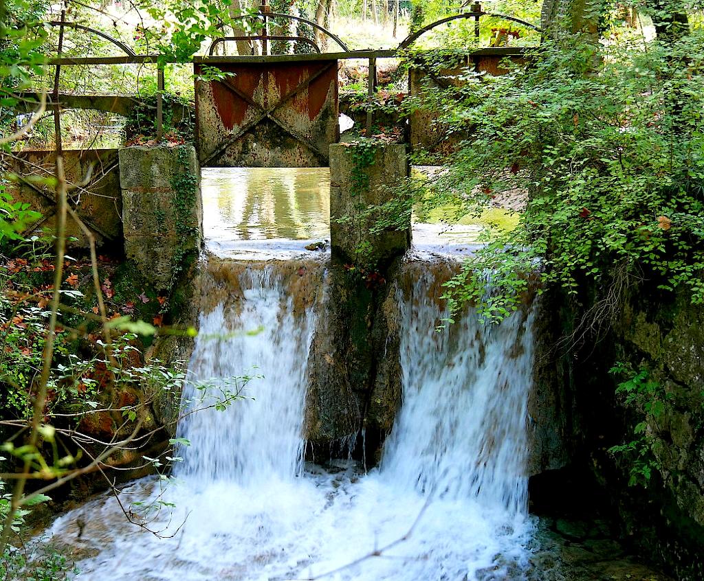 de l'eau à la source  P1060726