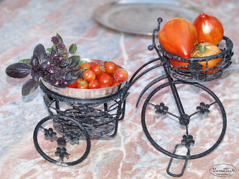 Légumes et fruits  du Jardin - Page 2 P8152011