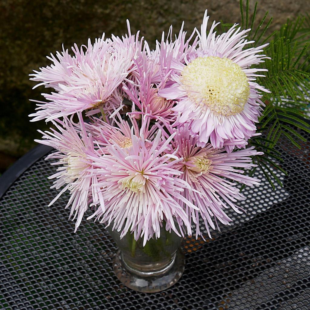 Bouquet Photo_22