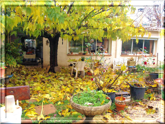 52 - Concours 'L'automne' !!! Photo_26