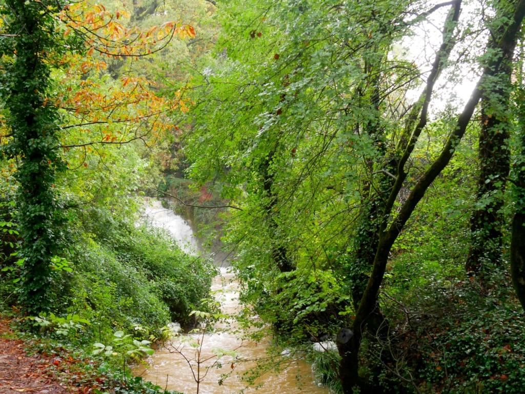 Apres les tres grosses pluies  Source15