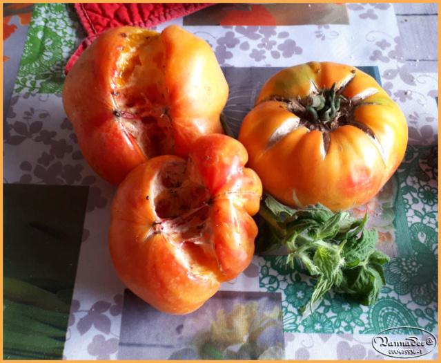 """le travail de la Grosse chaleur """"ça éclate"""" Tomate14"""