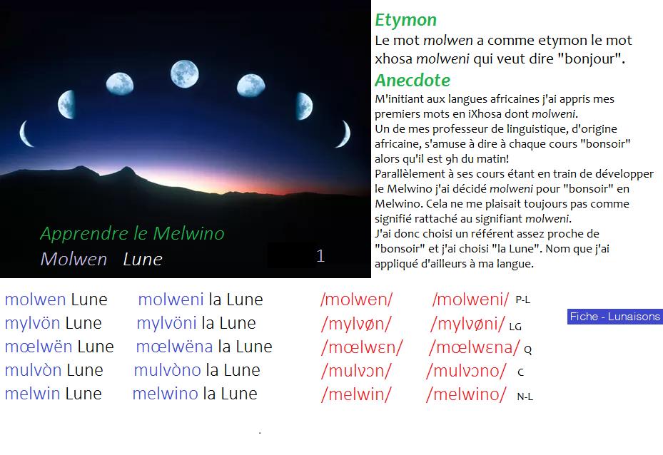 Melwino - Fiches Illustrées Fiche_13