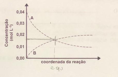 Equilíbrio Químico Grzefi10