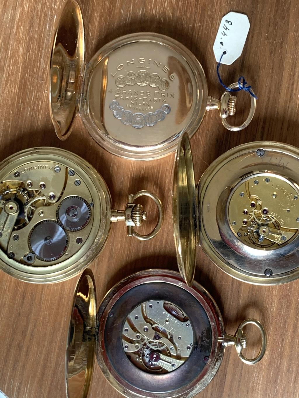Quatuor de Longines séance photos  0adf7010