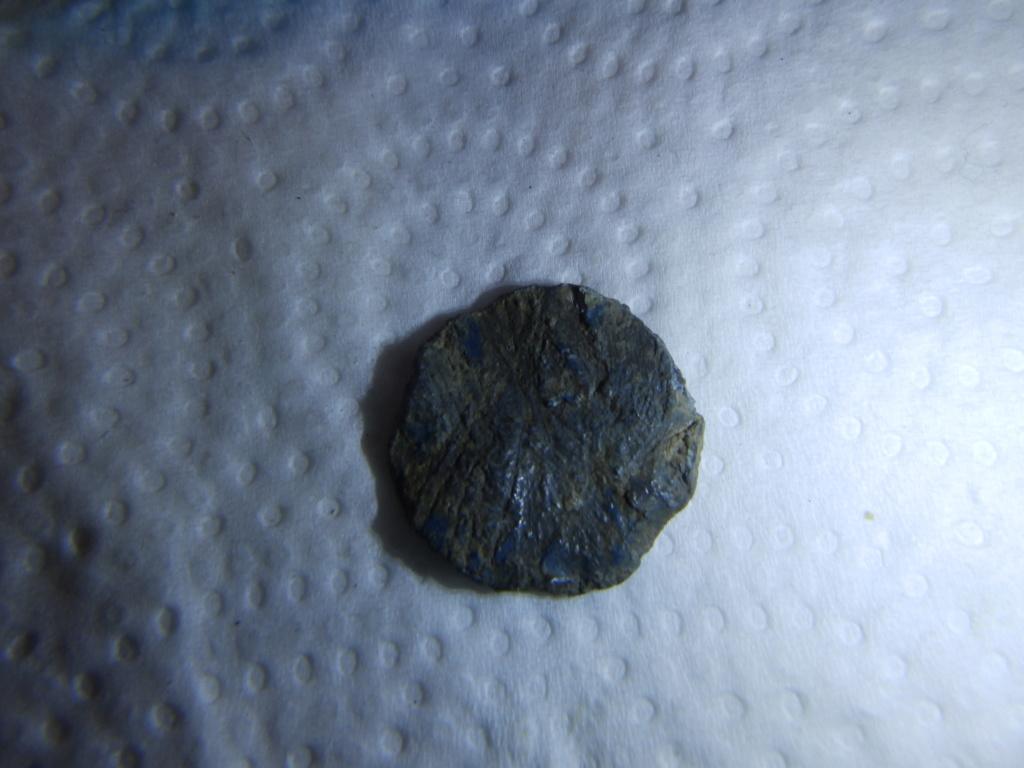 identification d un plomb P8250011