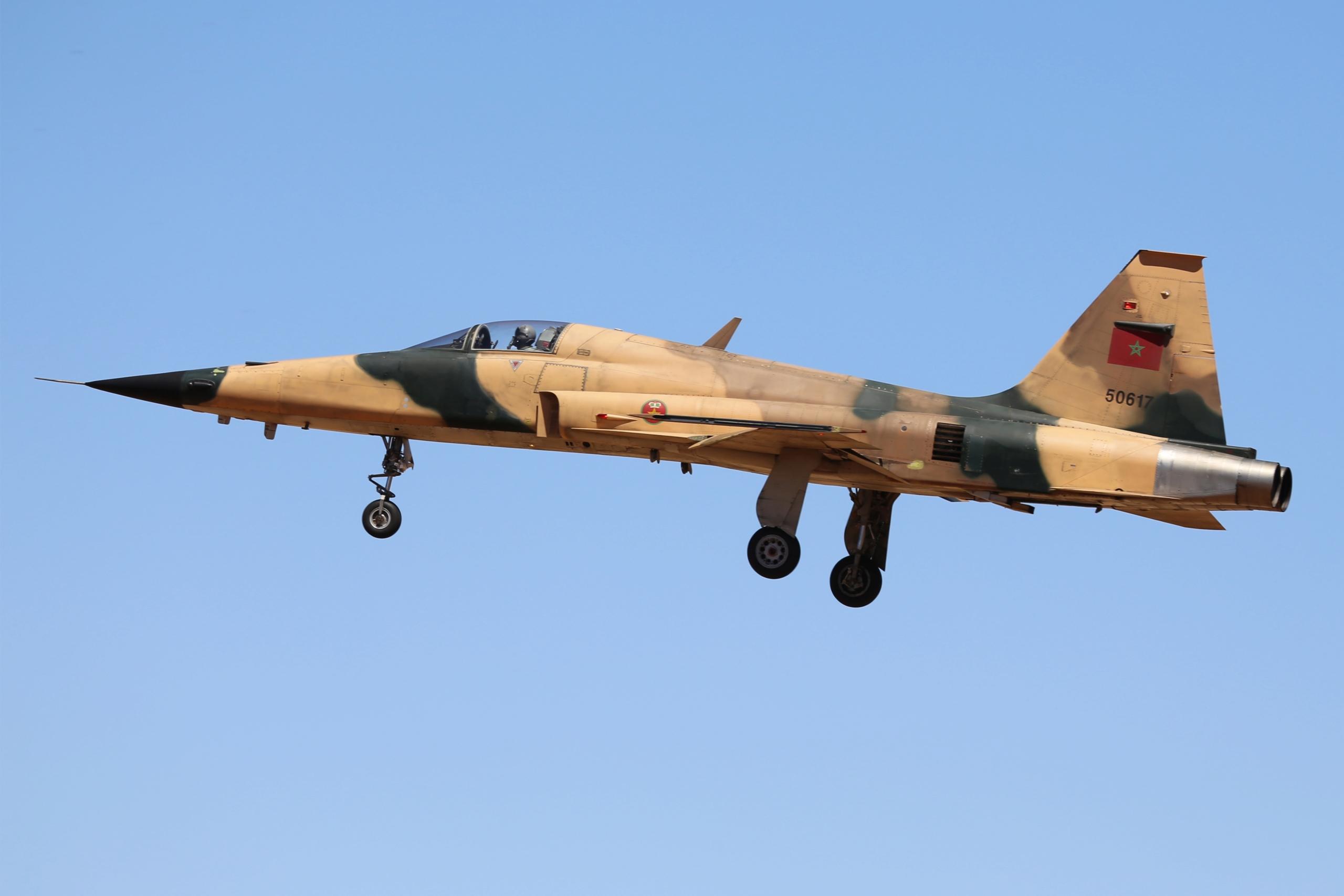 F-5A/B/E et F des FRA / RMAF Northrop F-5 Tiger III - Page 21 Clipb183
