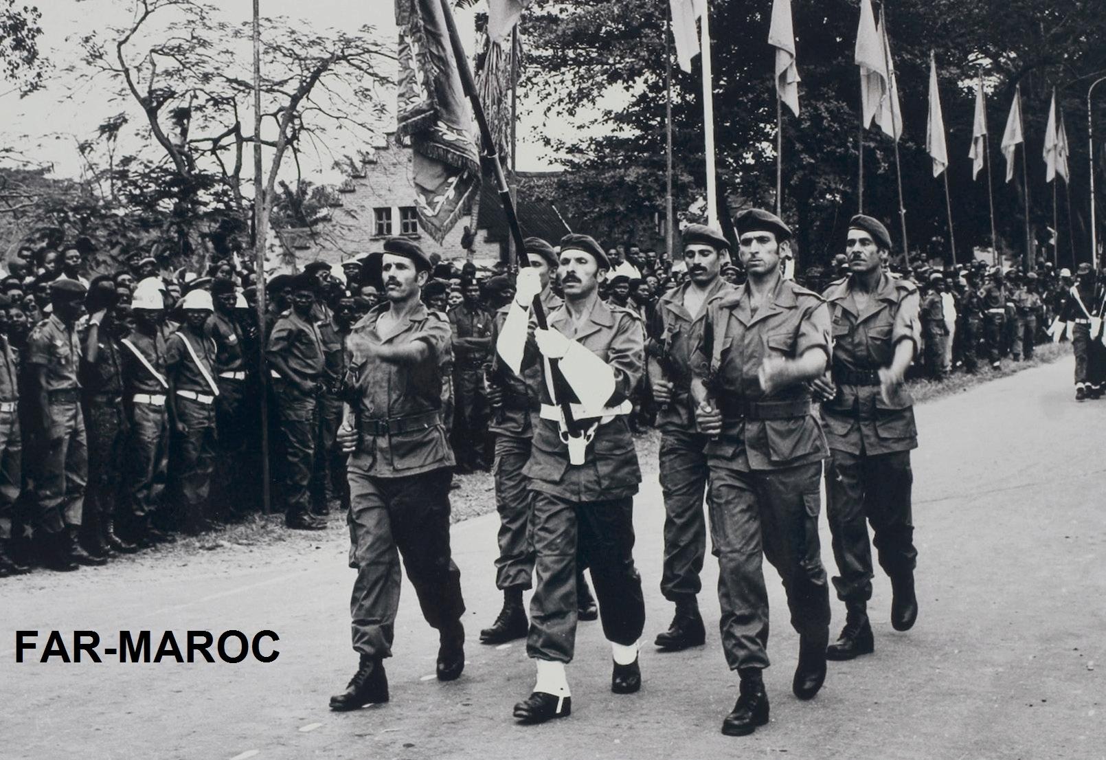 Les Forces Armées Royales au Congo - ONUC - 1960/61 Clipb185
