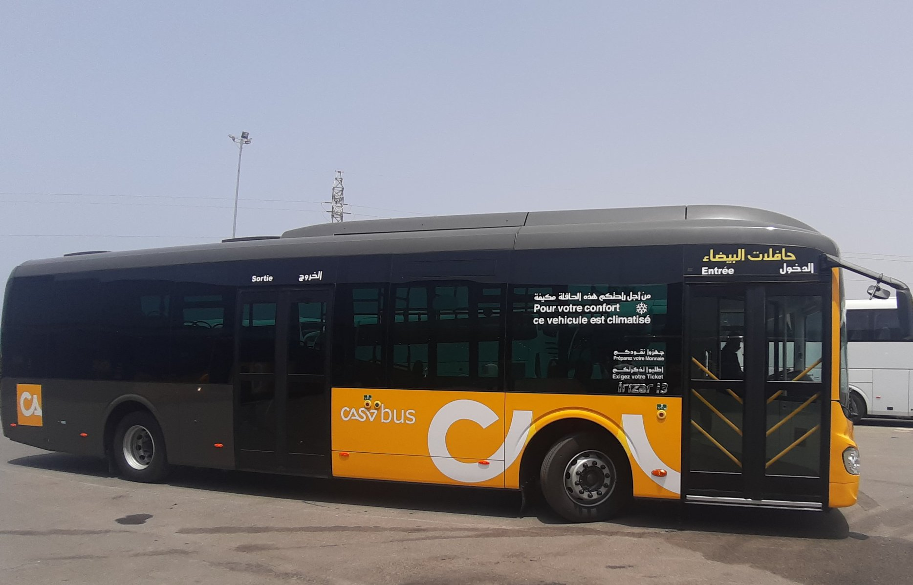 Alsa Al Baida Clipb376