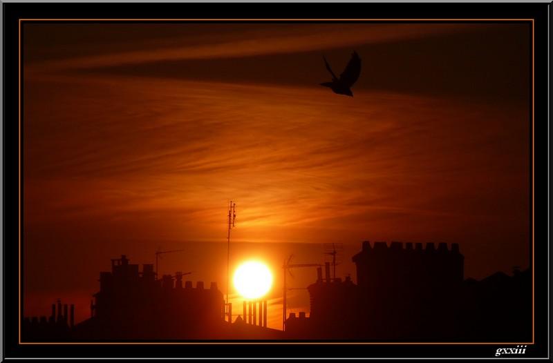 Lever de soleil - Page 17 29080812