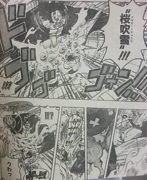 One Piece 510 810
