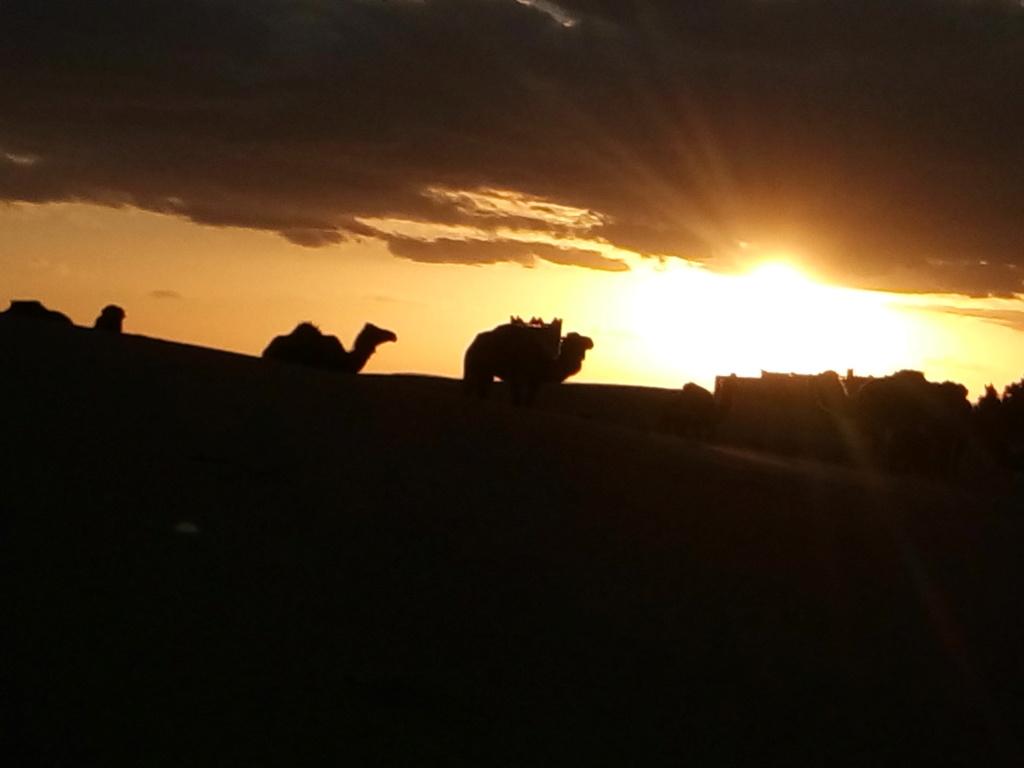 [nos beaux pays : la France, le Maroc et .....  le Monde] Couchers de soleil - Page 6 Maroc_10